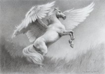 pegasus_by_thedrawinghands-d59ipwg